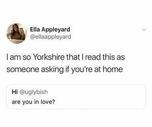 british, tumblr, and yorkshire image