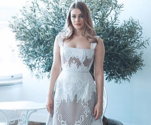book, after movie, and josephine langford image