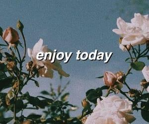 wallpaper, enjoy, and rose image