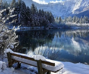 nature, view, and winter image