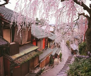 japan, place, and pink image