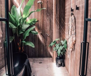 bathroom, fashion, and plants image