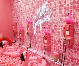 pink, flamingo, and aesthetic image
