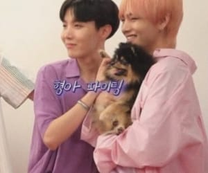 jin, puppy, and v image