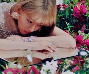 flowers, kpop, and mv image