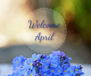 april, flowers, and blue image
