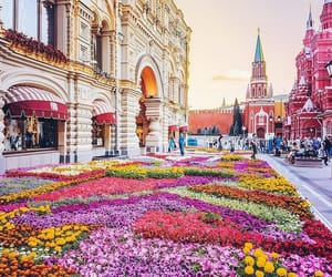 flowers, moscow, and place image