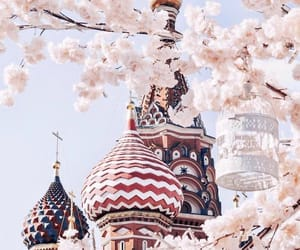 flowers, moscow, and russia image