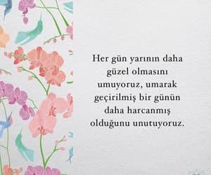 instagram and türkçe image