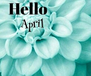 april, flowers, and seasons image