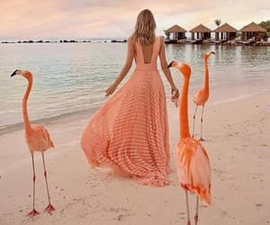 beach, beautiful, and dreamy image