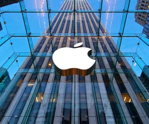 apple, photography, and building image