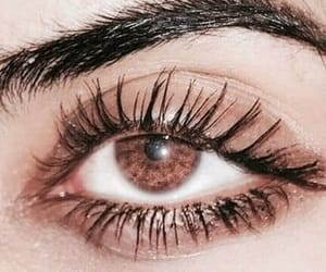 article, beauty, and eye lashes image