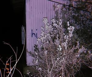 abandoned house, creepy, and south texas image