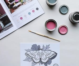 butterflies, colors, and painting image