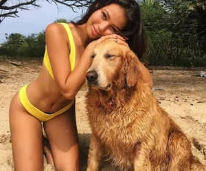 abs, bikini, and sexy image
