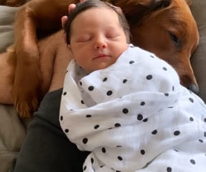 baby, baby boy, and beautiful image
