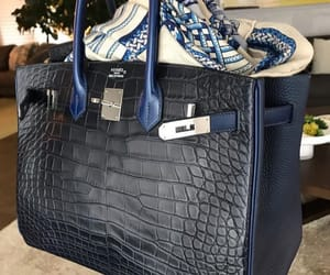 crocodile, hermes, and Birkin image
