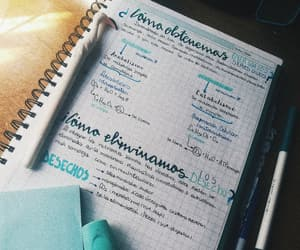 biology, lettering, and organization image