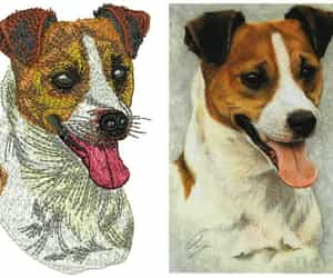 embroidery digitizing image