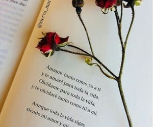 amor, quotes, and parejas image