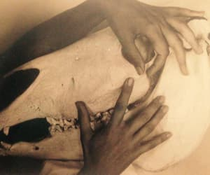 georgia o'keefe, beautiful hands, and hands of an artist image