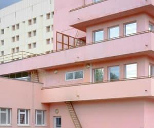 pink, alternative, and vintage image