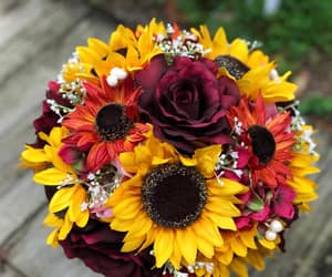 bouquet, bridal bouquet, and engaged image
