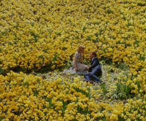 flowers, yellow, and big fish image