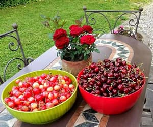 cherry, spring, and fruit image