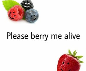 berries, funny, and humor image