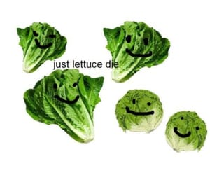 funny, humor, and lettuce image
