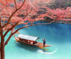 travel, japan, and nature image