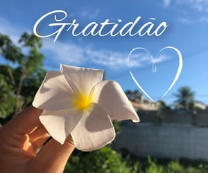 autoral, grateful, and text image