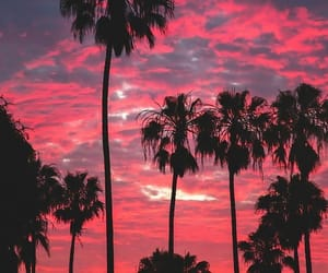 california, sunset, and los_angeles image