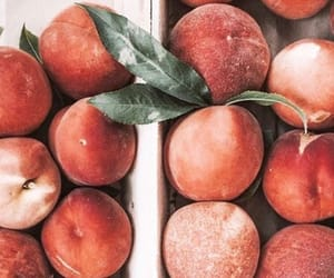peach, fruit, and summer image