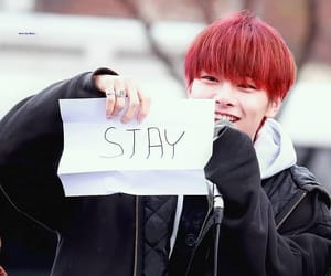 in, stay, and jeongin image