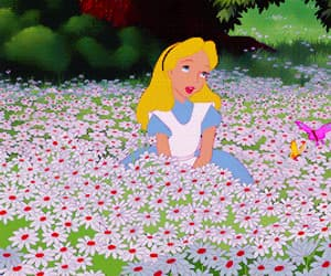 alice in wonderland, colors, and daisies image
