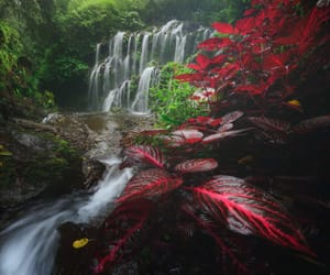 landscape, nature, and waterfalls image