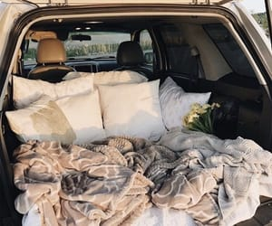 car, flowers, and blanket image