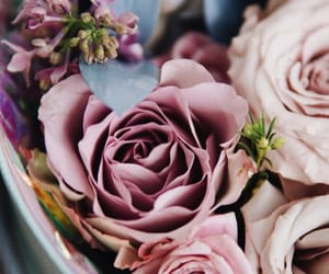 bouquet, colors, and dusty image