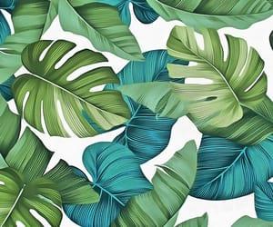 illustration, leaves, and pattern image