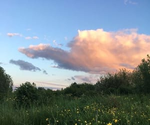 nature, flowers, and clouds image
