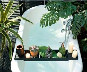 plants, bath, and bathroom image