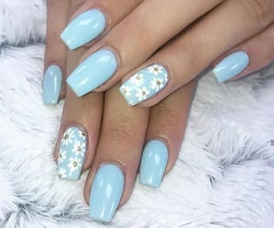 baby blue, blue, and flower image