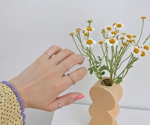 aesthetic, classic, and flowers image