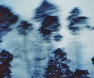 tree, grunge, and blue image