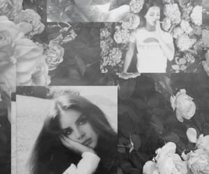 wallpaper, lockscreen, and lana del rey image