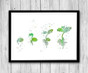 biology, etsy, and classroom decor image