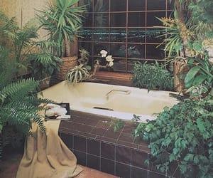 bathroom, house, and plants image